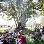 Spier Wine Farm comes to Gauteng