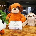 Teddy Bears help Piza e Vino diners to social distance