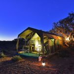 Sanbona opens its Explorer Camp with special rate for South Africans