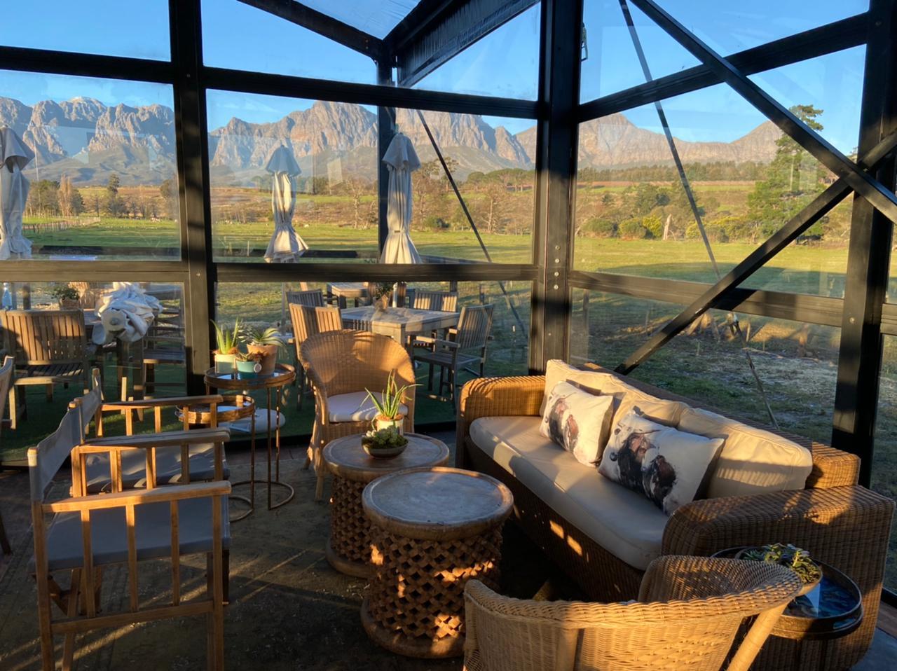 Vergelegen wine estate Nguni Cafe