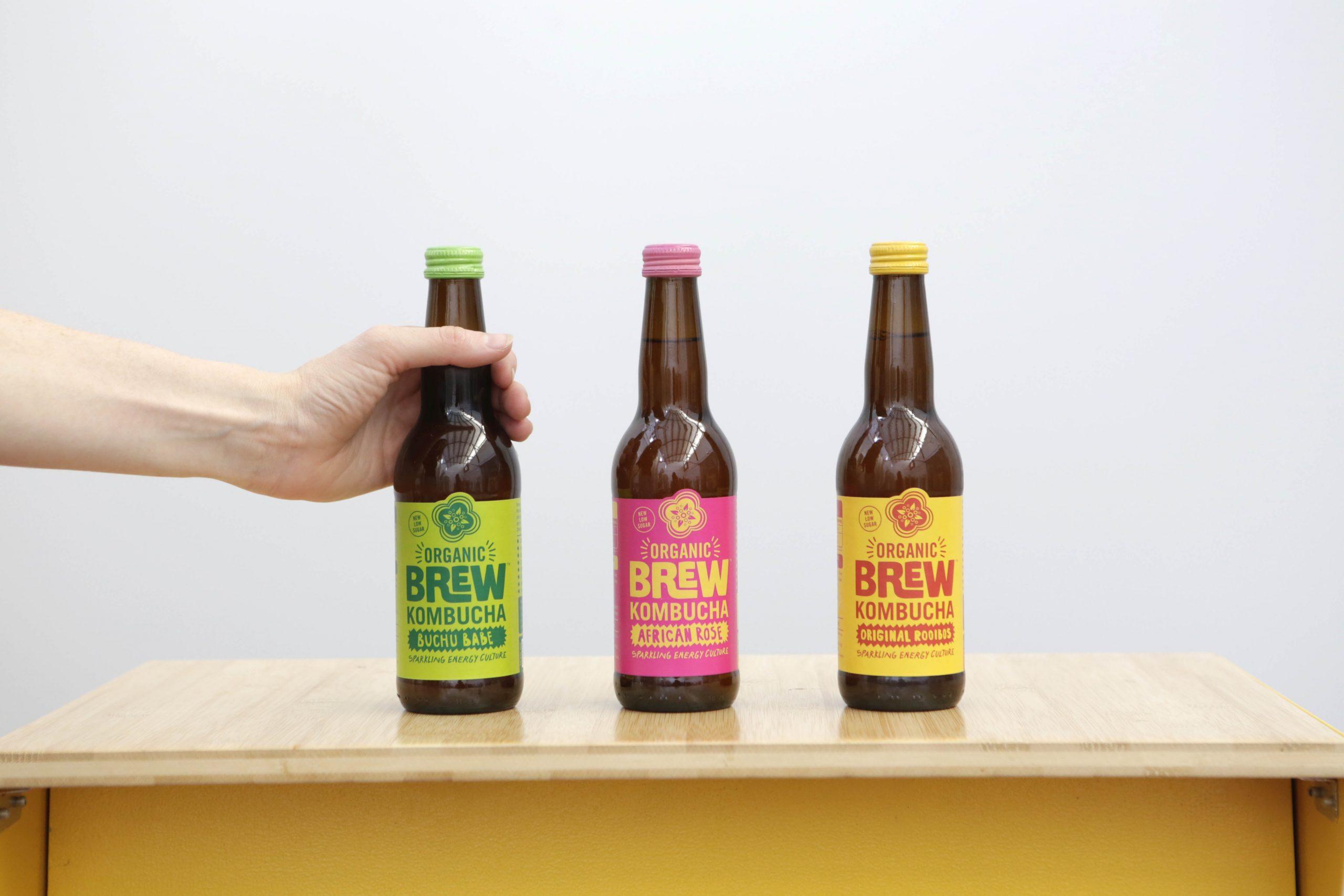 beverage industry Brew Kombucha